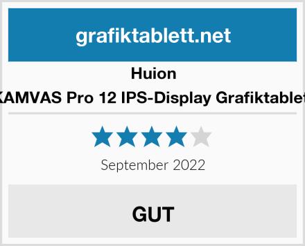 Huion KAMVAS Pro 12 IPS-Display Grafiktablett Test